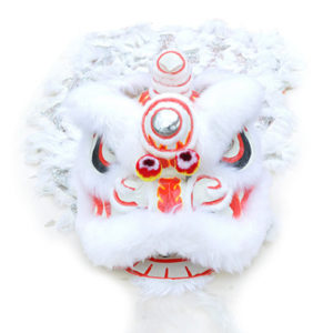 lion dance shop
